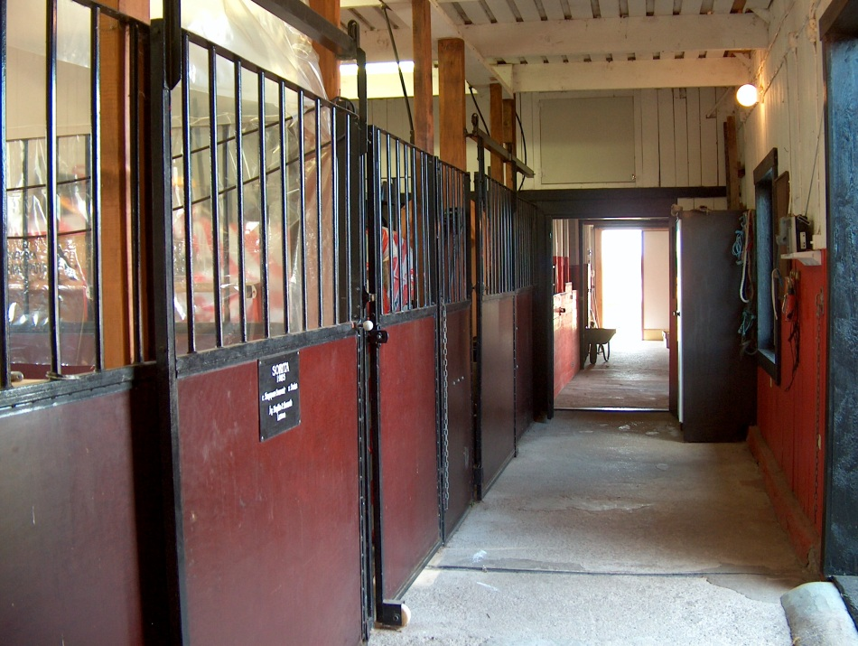 Our empty stable.