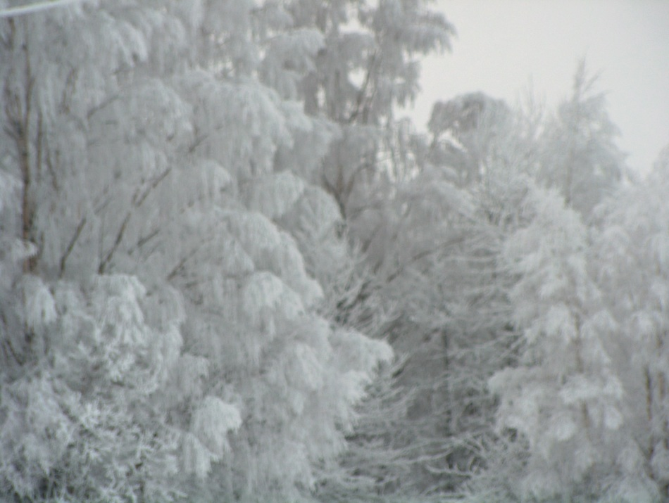 More ice crystals at Gullringstorp