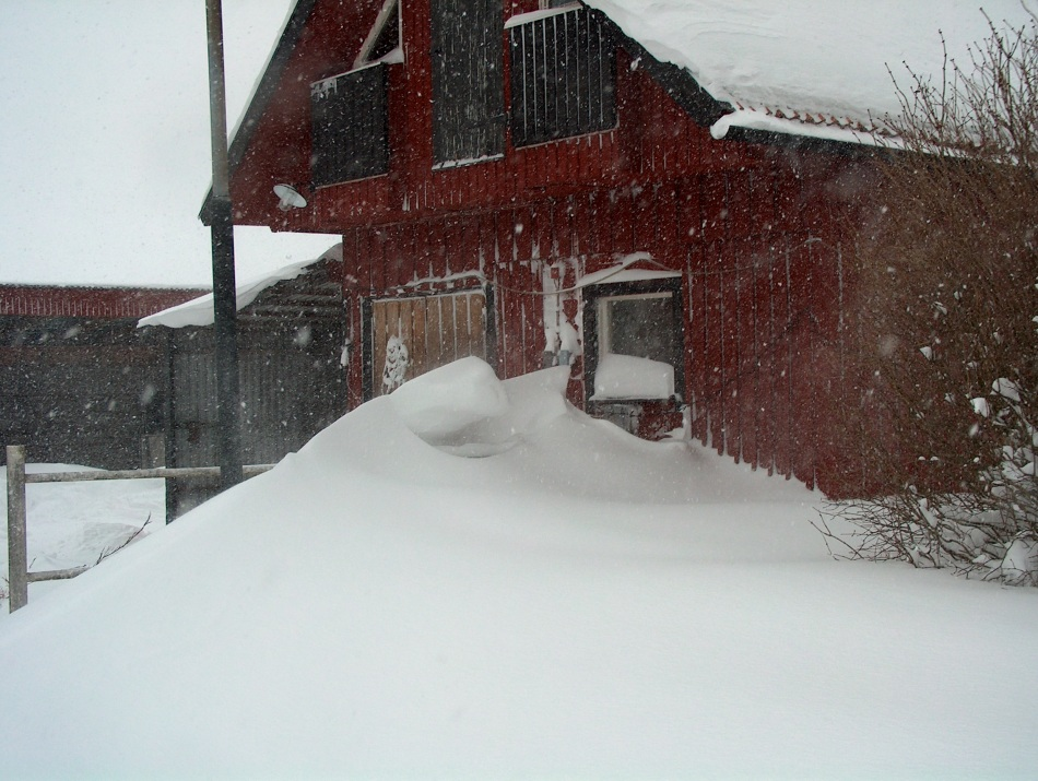 Snow drifts make it impossible to open the stable door
