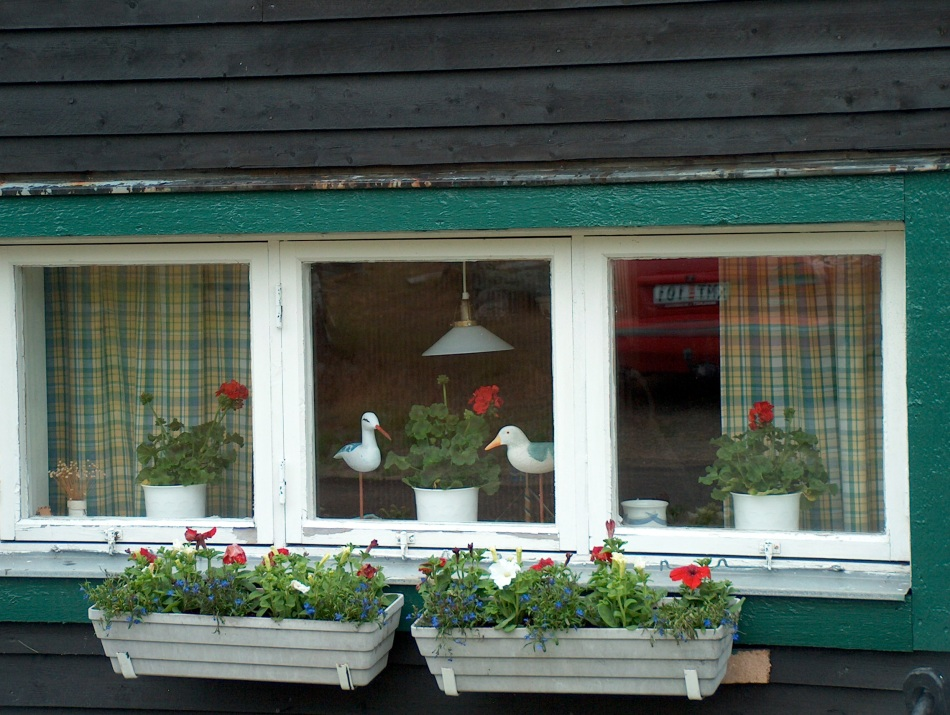 Village windows full of flowers for this day and summer