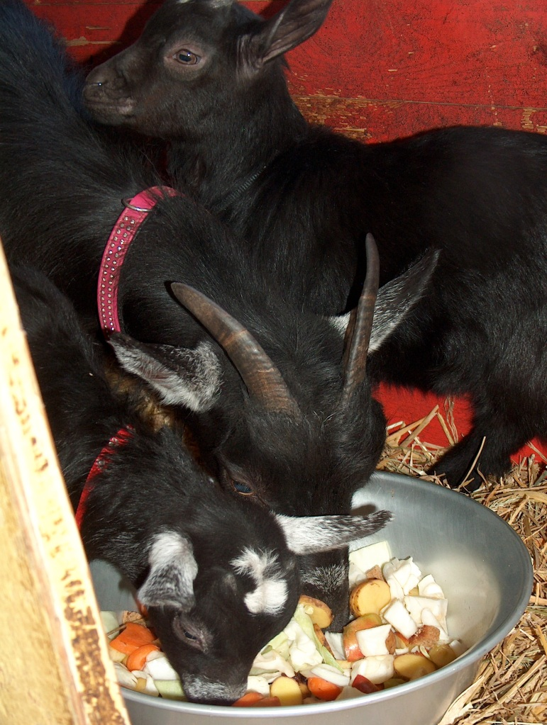 Keriana joins her mother at meal time while Flynn seems not to be interested