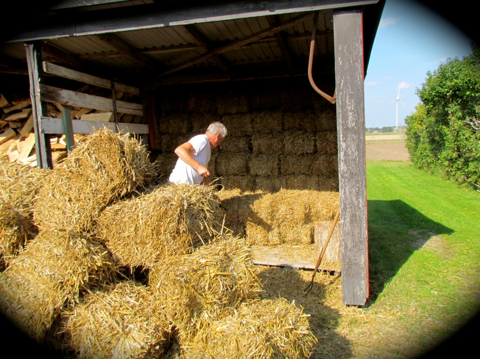 It was a big job, but one bale at a time and in no time at all my husband had them all stacked beautifully