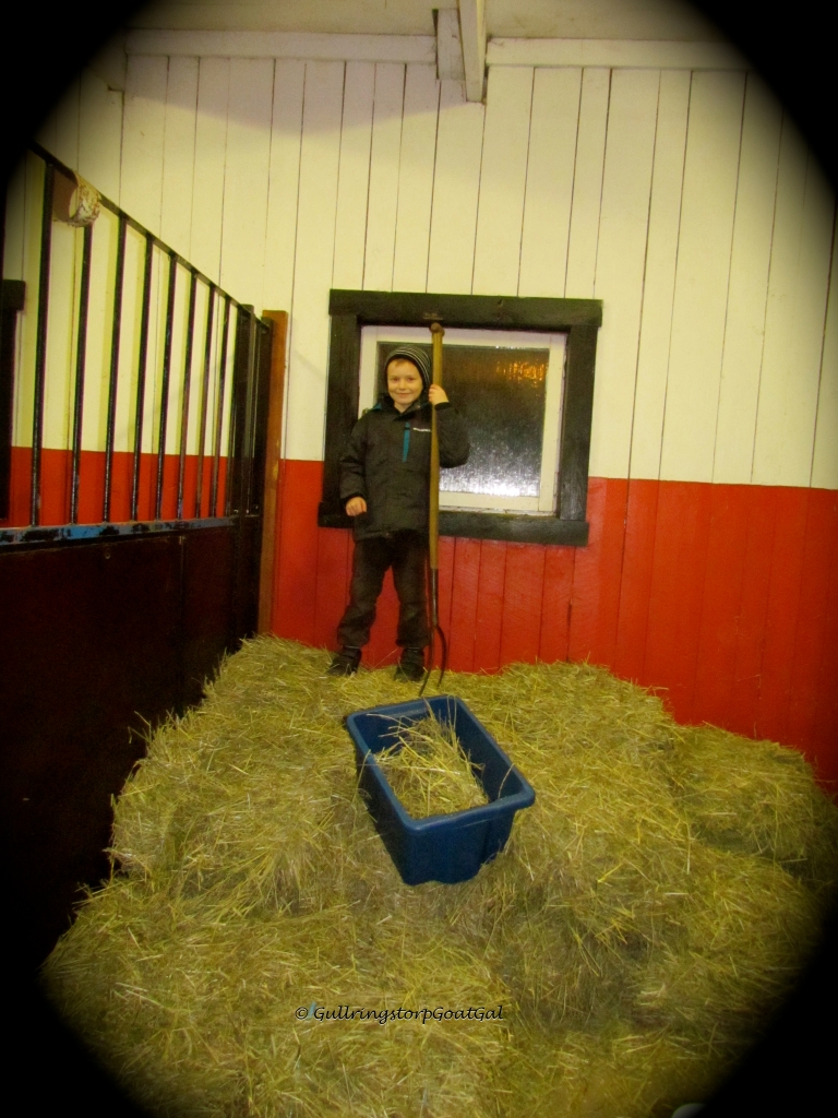"Our new ""stable hand"" continues to check on the hay stacks"