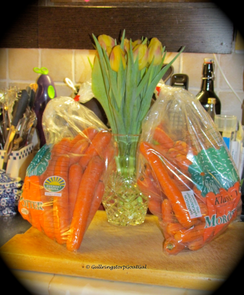 They came bearing gifts of two 2 kg bags of carrots! Wow were we ever surprised. What a sweet thing to do.