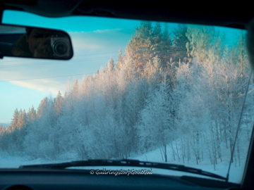 This was the view as we made the long drive from Lidingö up to Jokkmokk