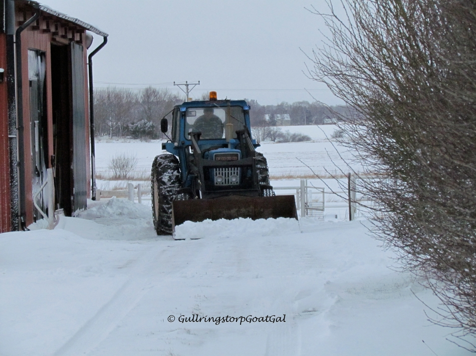 My husband really is happy to have the tractor to help clear large amounts of snow