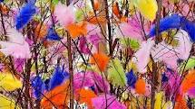 Beautiful colorful Easter feathers can be seen all over Sweden