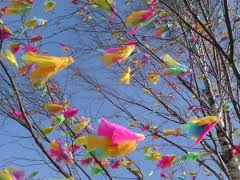 I have to admit that as different as this may be, the feathers on trees do look beautiful in the wind