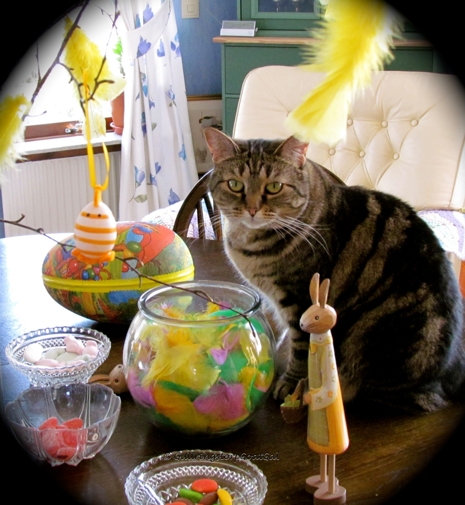 I love the colors of Easter, so does Tasha