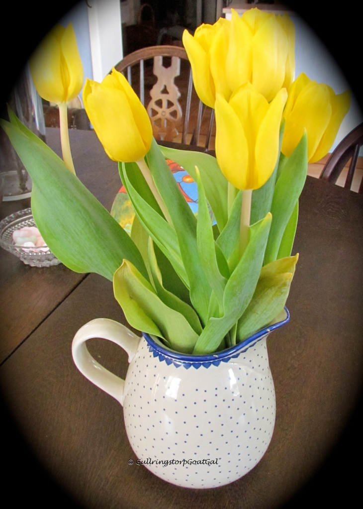 Tulips can brighten up any home Easter or not!