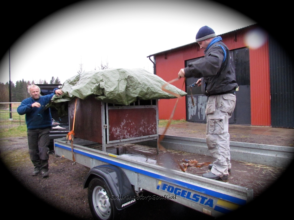 The tarp was secured in place so that Emil had a comfortable and dry ride home.