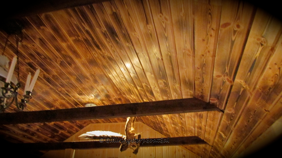 "Just look at the beautiful ""burn"" work on t he ceiling wood"