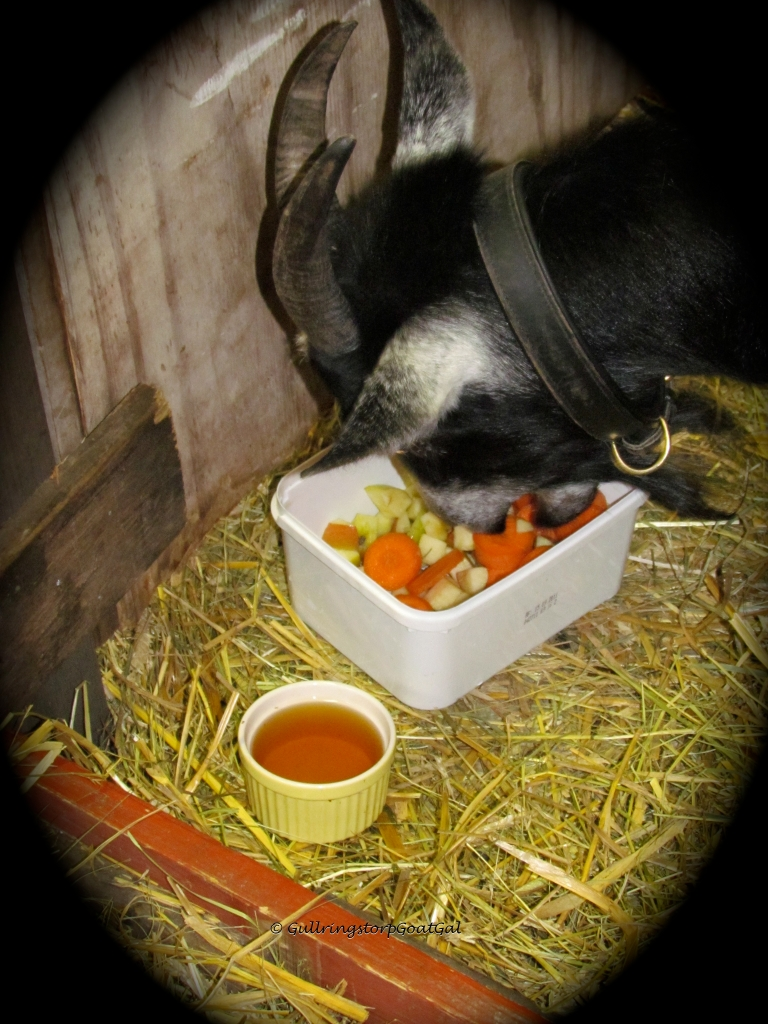 On the morning after her delivery, Alika gets the Gullringstorp new mother's breakfast. Fresh fruit and veggies and warm molasses water