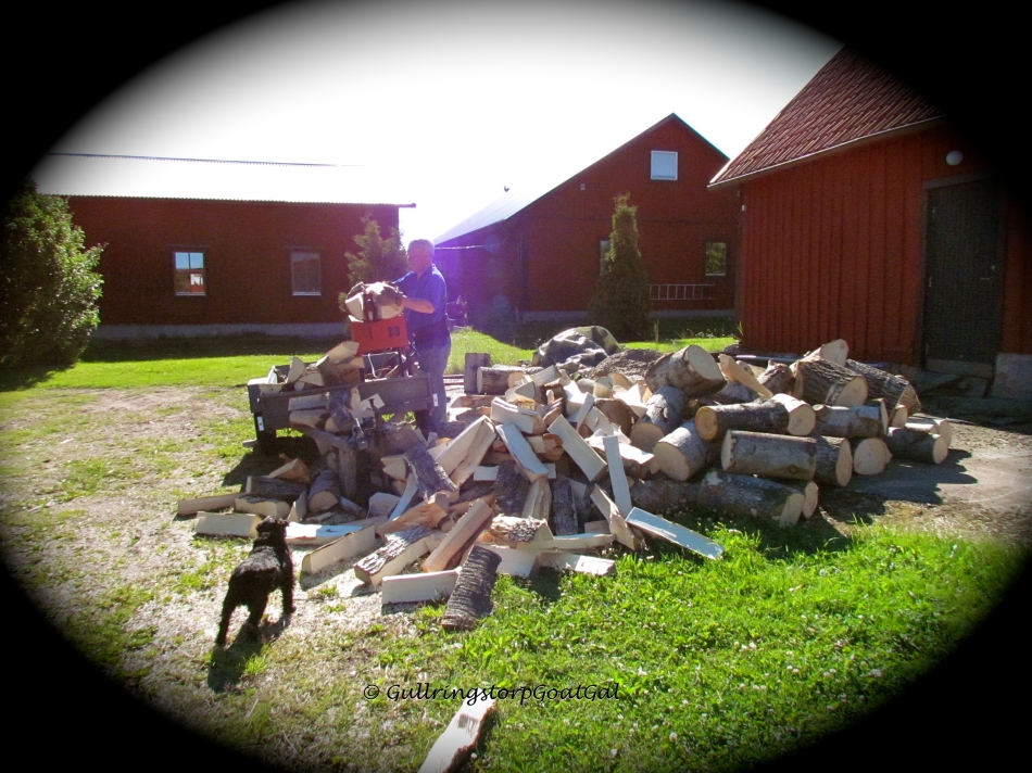 My husband cleaving some big wood chunks