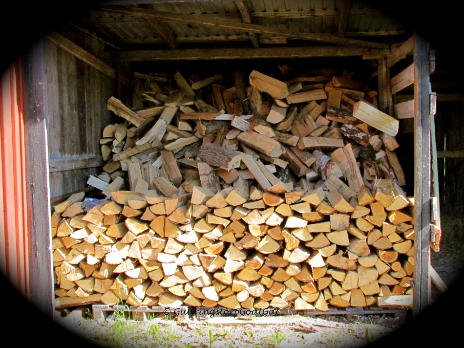 Yeah ! We have wood for the coming winter!
