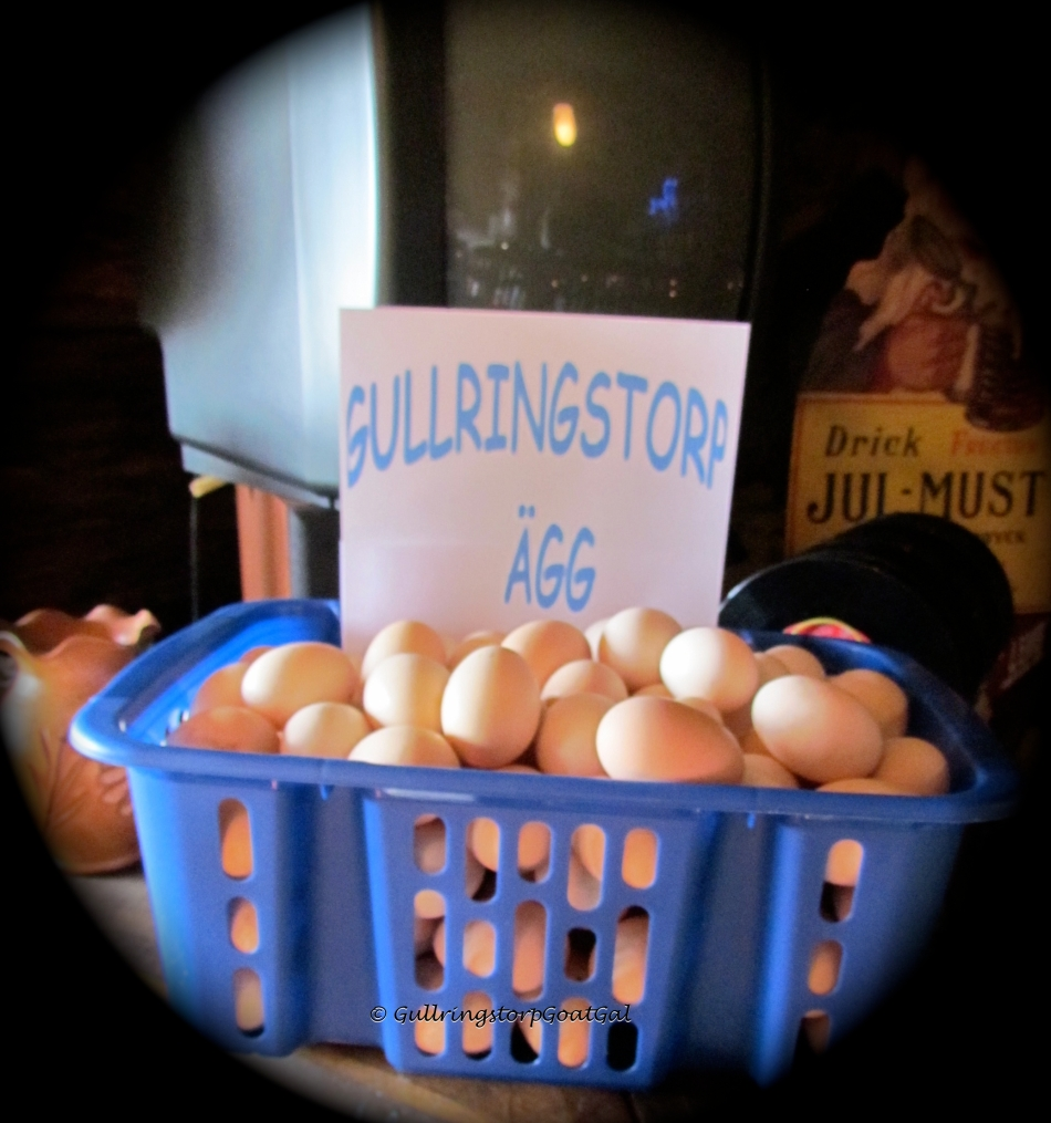 Our Gullringstorp Eggs from our free range hens  were available for purchase
