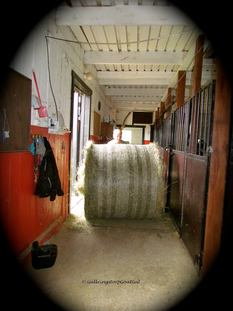 My husband insists on pushing the bale in himself and will not accept my help