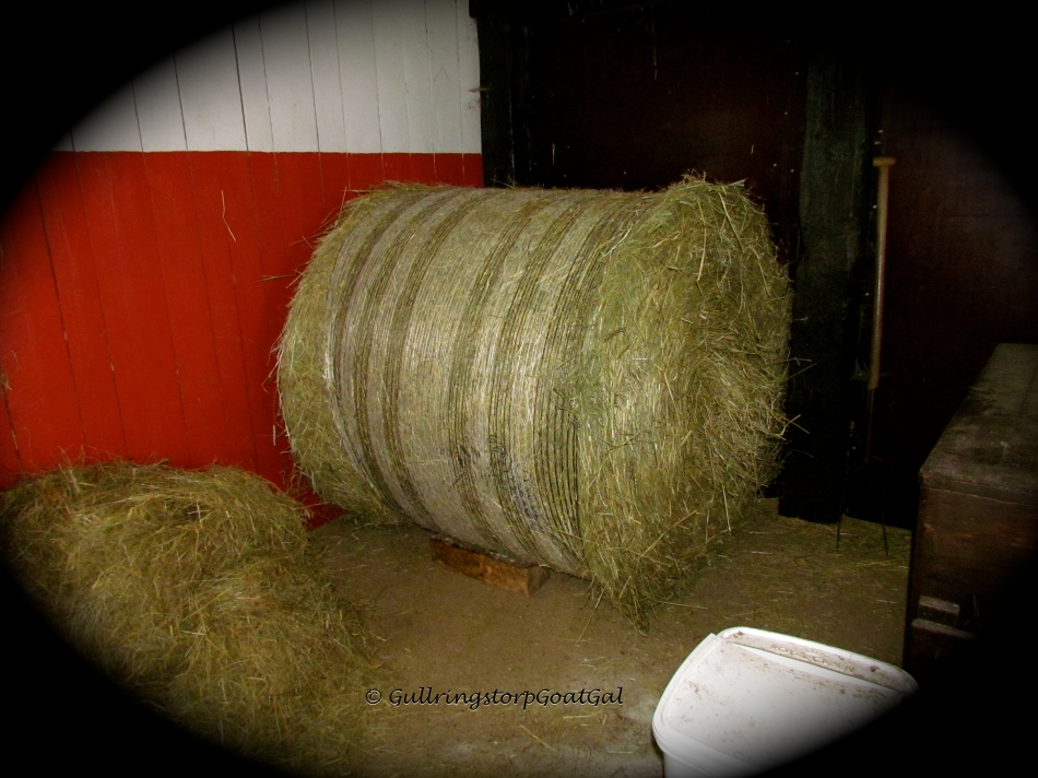 Finally, our new bale is where it belongs !