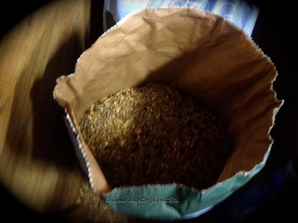 """My husband has brought home a couple of bags of grain for our herd. We use a horse muesli because of its copper content, which is important mineral for our goats. There is no """"goat """" food available here in Sweden and  the sheep pellets lack the proper amount of copper."""