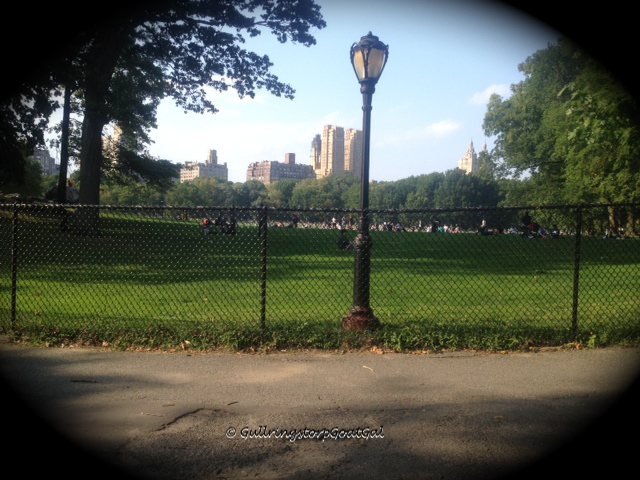 A view across a area called the Sheep's Meadow