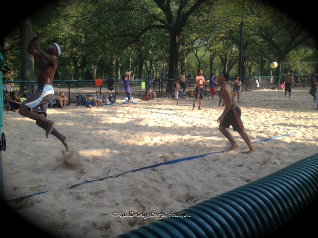 Volleyball in Central Park