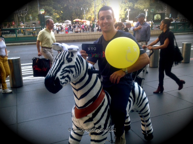 An employee of a toy shop displays a new product, the zebra on wheels