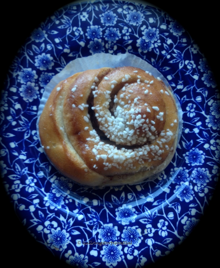 We like all other Swedes enjoyed our cinnamon buns (Kanelbullens). I warmed ours up a bit in the microwave. Yummy!!!!!