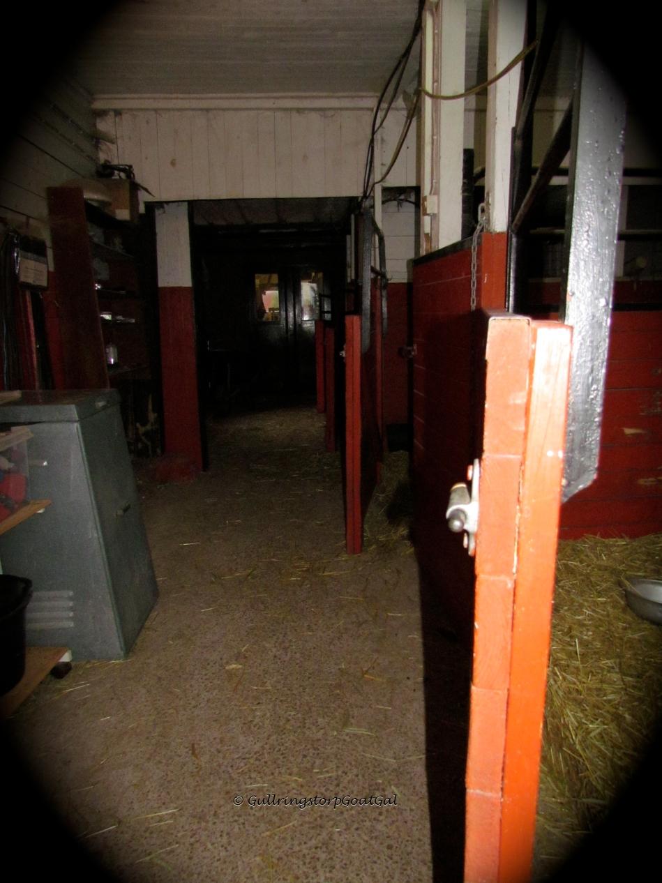 Empty boxes, what a strange sight, no goats....