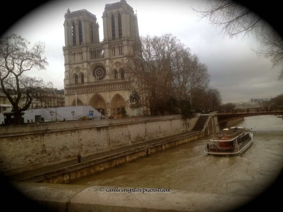 A view of Notre Dame from a bridge