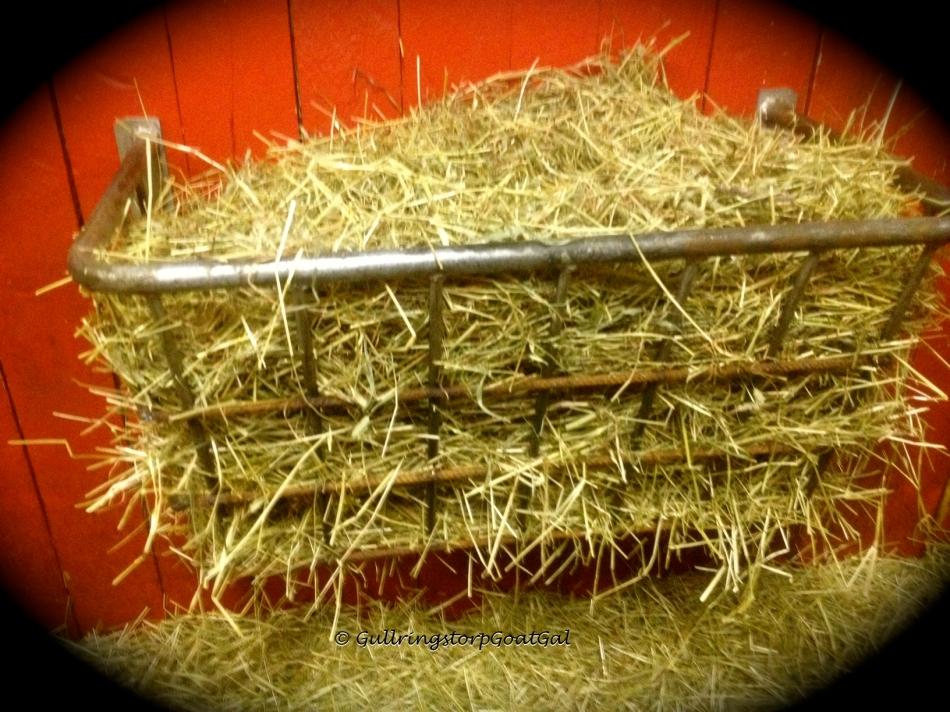 Boy's hay rack