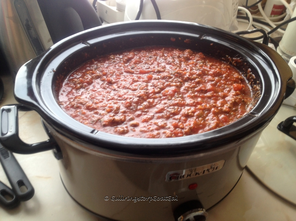 Look!!! Pasta sauce in my new crock pot!