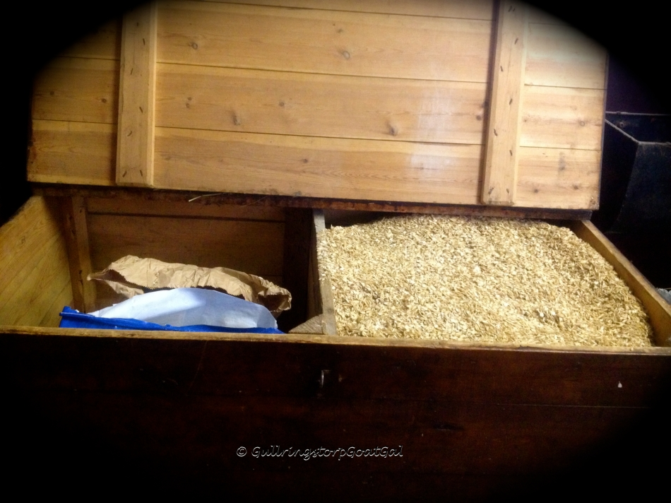 "This sturdy old horse grain box was at the other end of our stable but was moved to the ""feed"" room. One side for the oats and the other for the meusli"