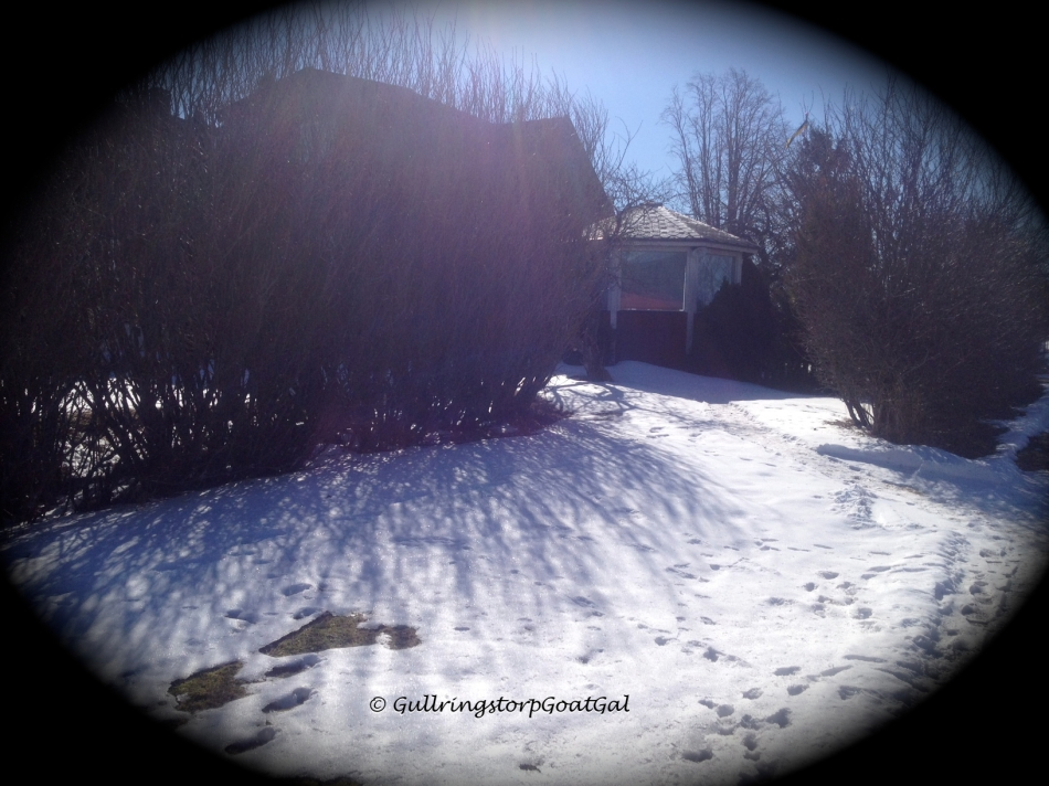 The sun shines on the remaining snow