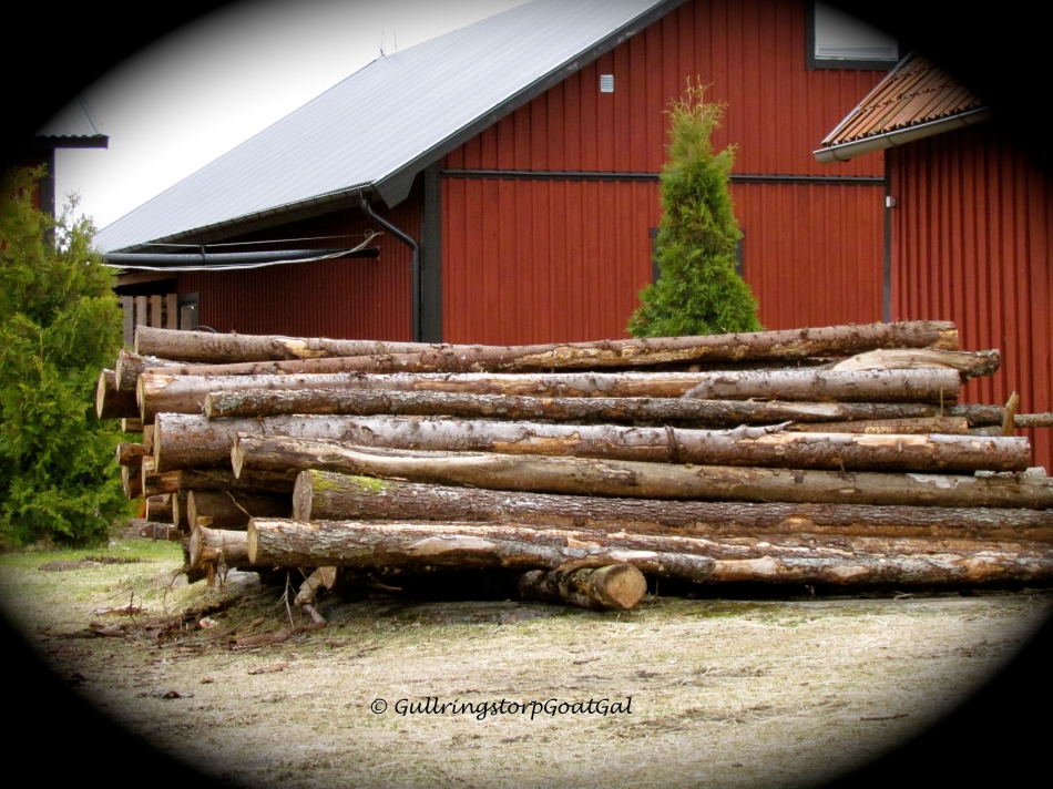 WE have purchased wood already chopped for our home the past winters, but this winter my husband chosse to buy logs and cleave them himself; more cost efficient and I think fun for him