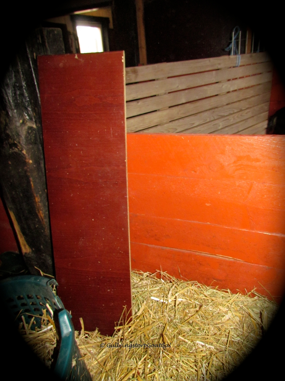 The boards can be removed , set to the side and i can climb into Pumpkin's box from Poppy's