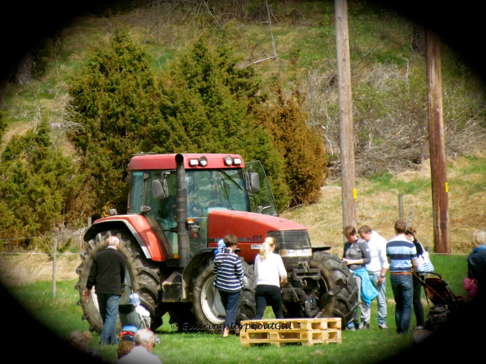 No countryside event would be complete without a big red tractor