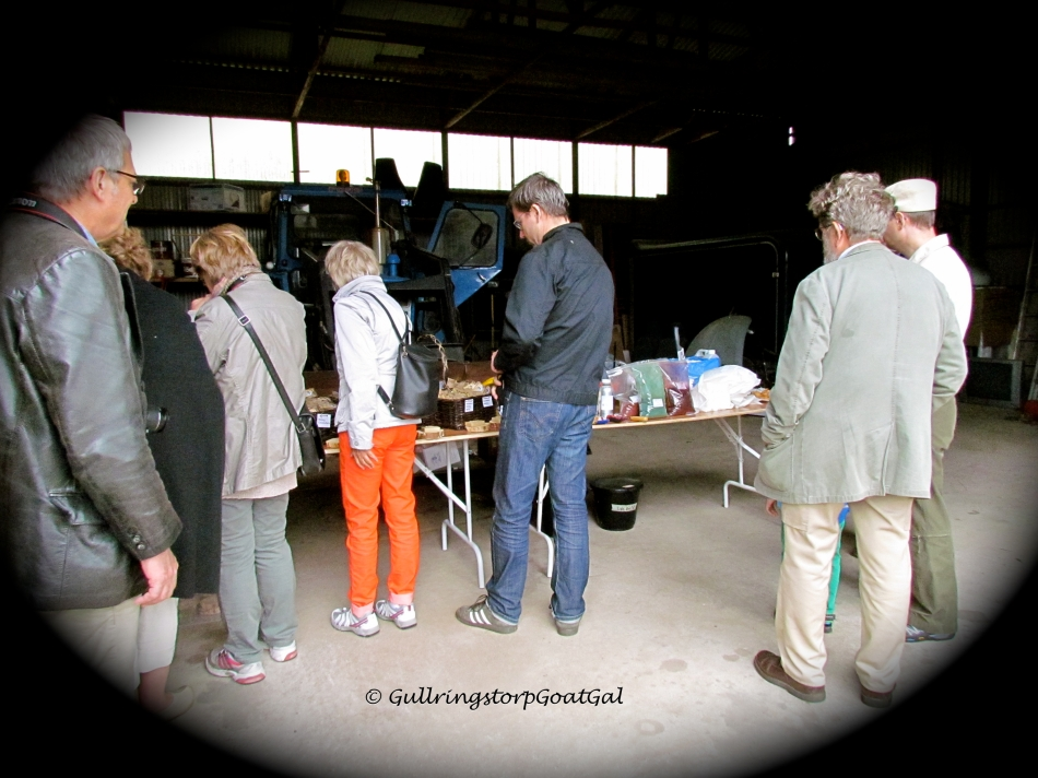 Soap Making tour over, guest start to view Li'l Sis Goat Milk Soap products