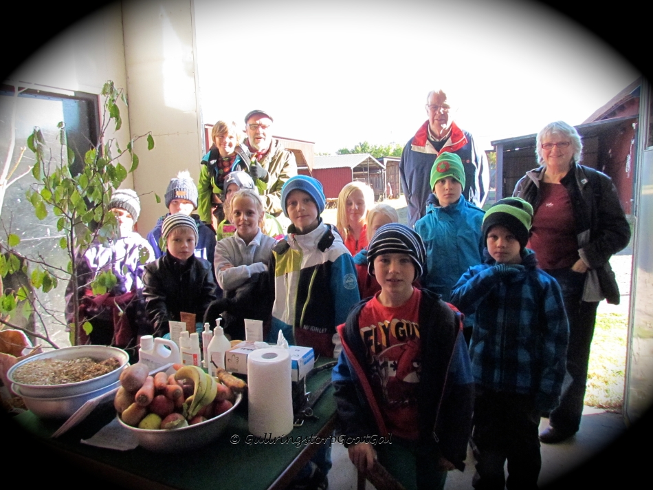 Here is the entire group just before the Gullringstorp Goat Tour
