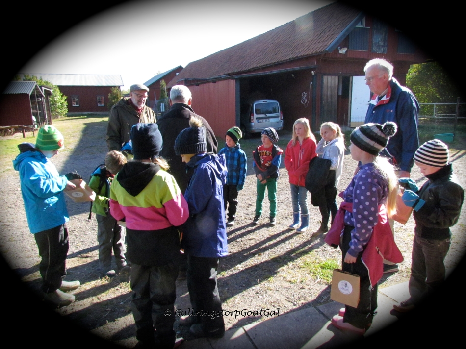 Time to say goodbye to the Mini Scouts of Vadstena