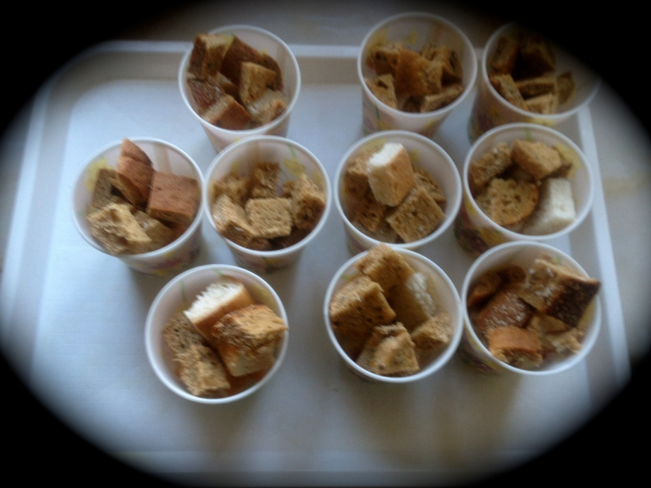 The children received a cup full of bread cut into cubes to feed the goats. We expected 10 but had 2 extra so they had to share the bread cubes