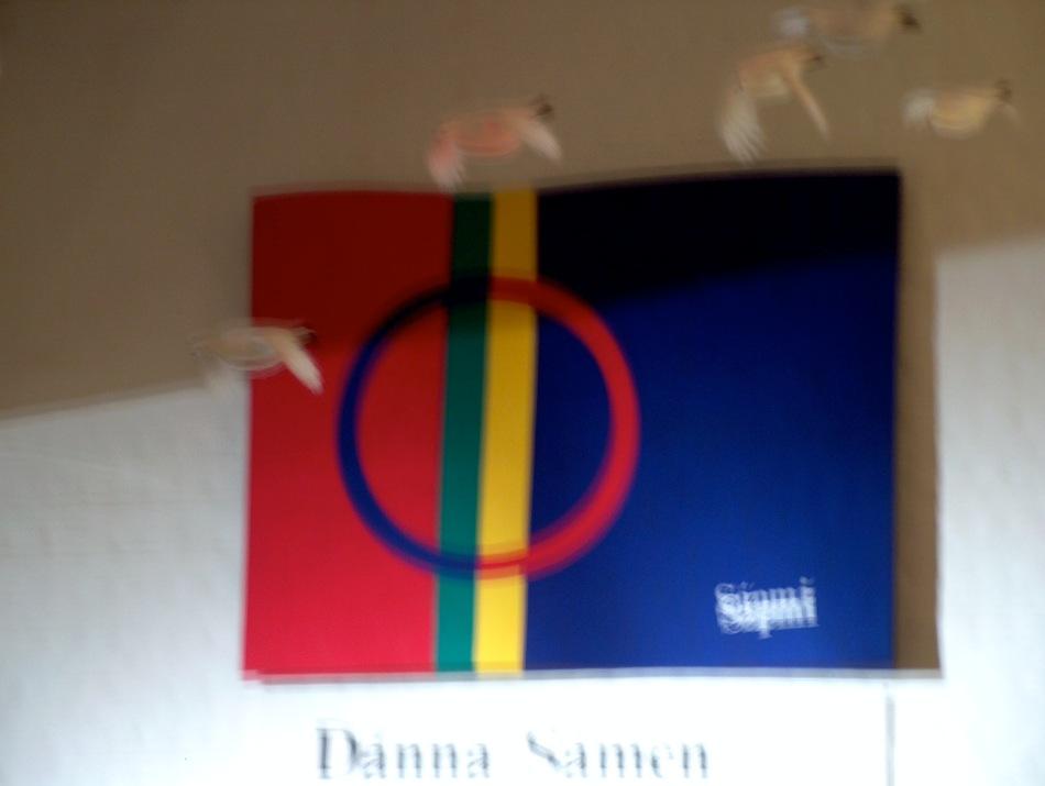 The Sami flag